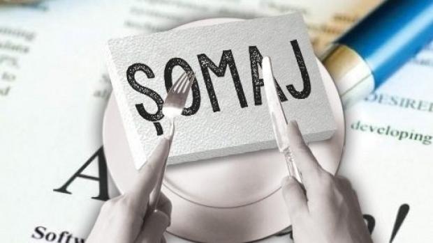 Top 25 ajutoare de somaj in Romania