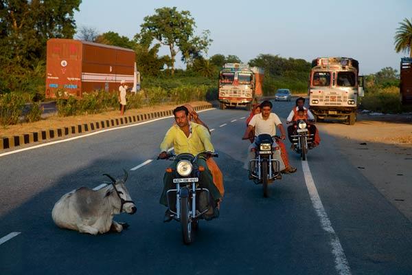 India nu-i ca Romania: regii asfaltului dau bani ca sa castige contracte si construiesc 2 km de autostrada/zi